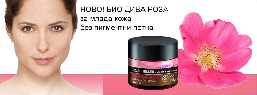 Др Шелер